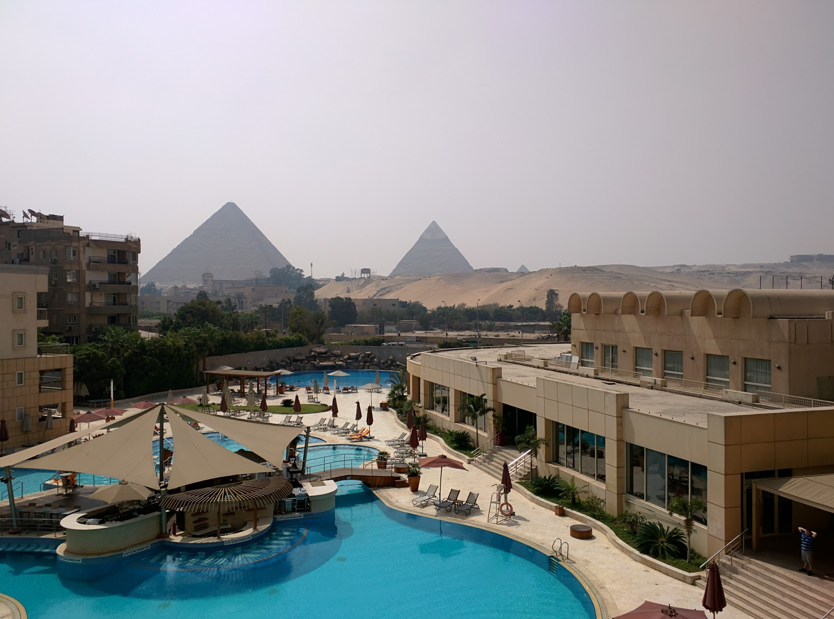 Tales from the road: the worst airport queuing in the world, and Don eats a Cairo pigeon